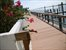 2505 South Ocean Blvd #617, Outdoor Space