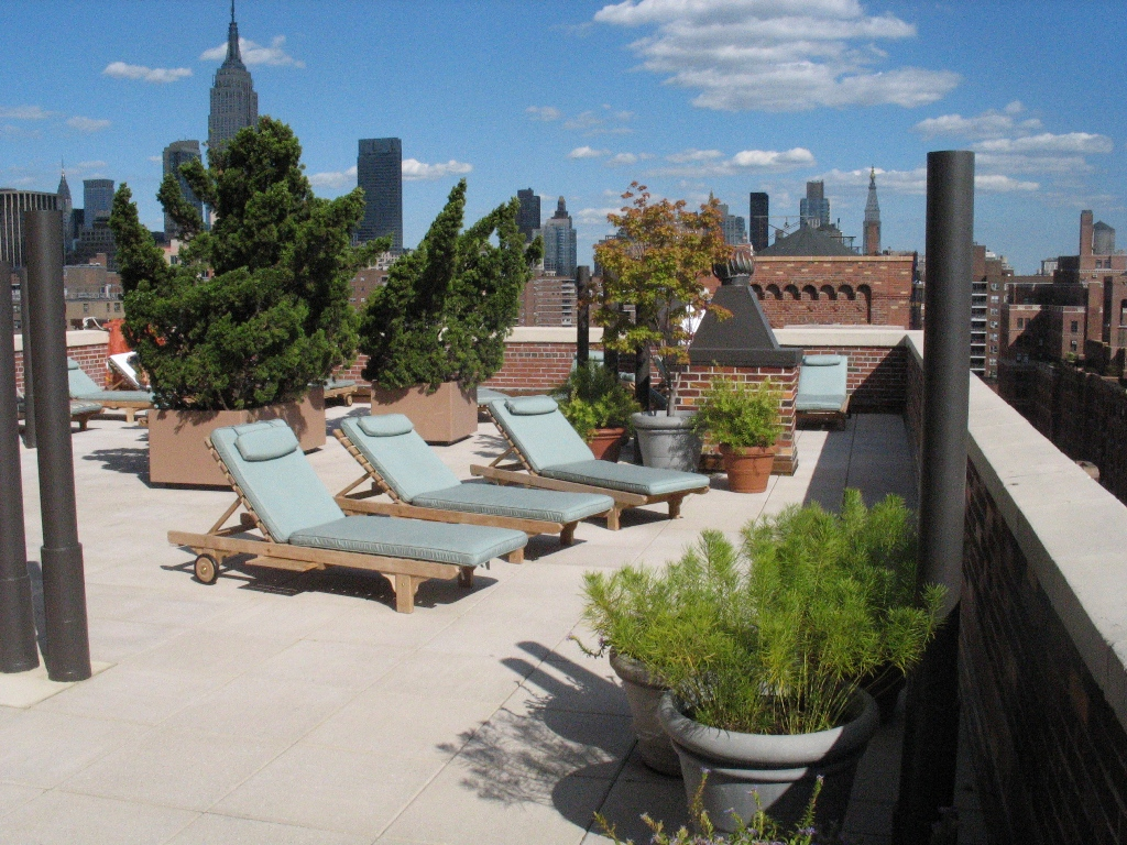 Beautiful Views and Sunshine on the Common Rooftop