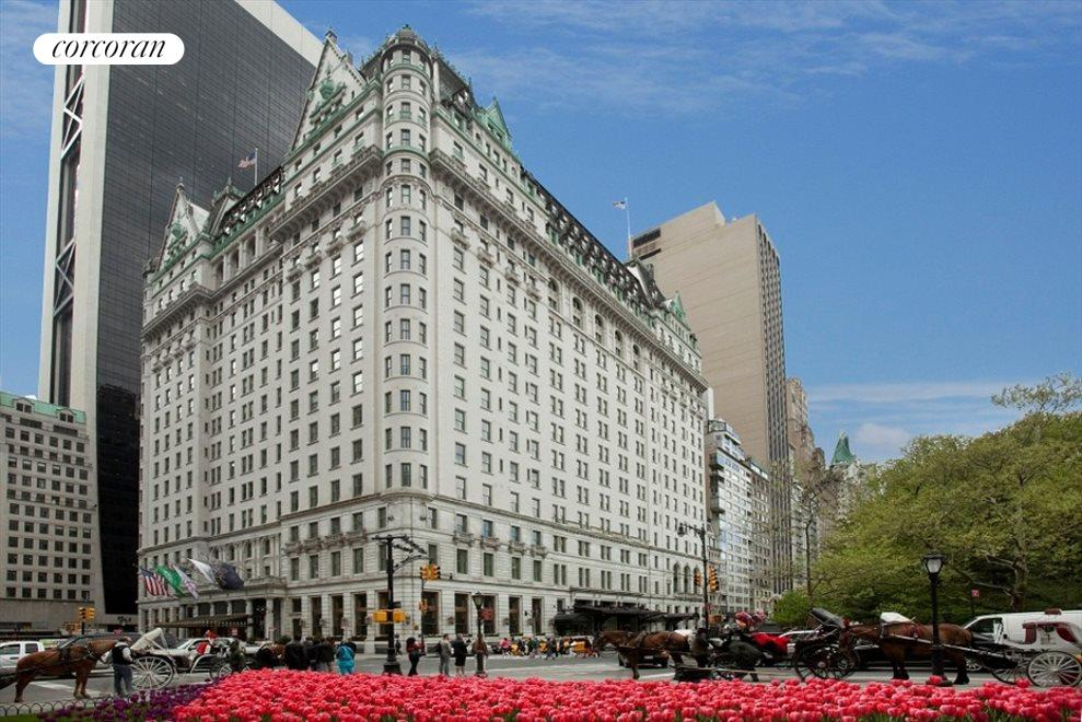 New York City Real Estate | View 768 Fifth Avenue, #PH2040 | room 8