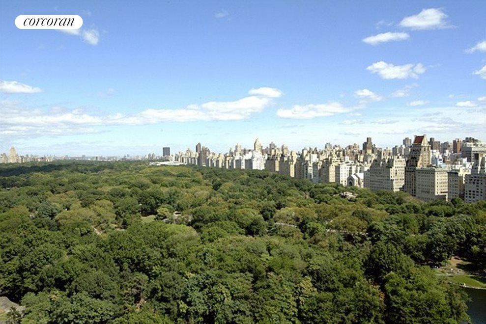 New York City Real Estate | View 768 Fifth Avenue, #PH2040 | room 12