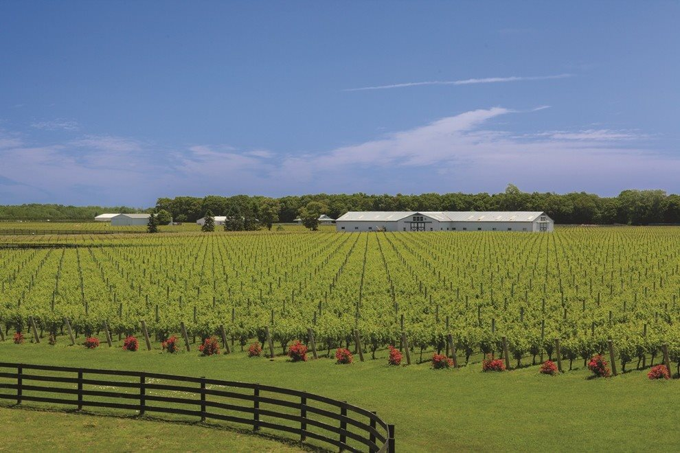 Big E Farm, Jamesport, Hamptons Real Estate | Corcoran