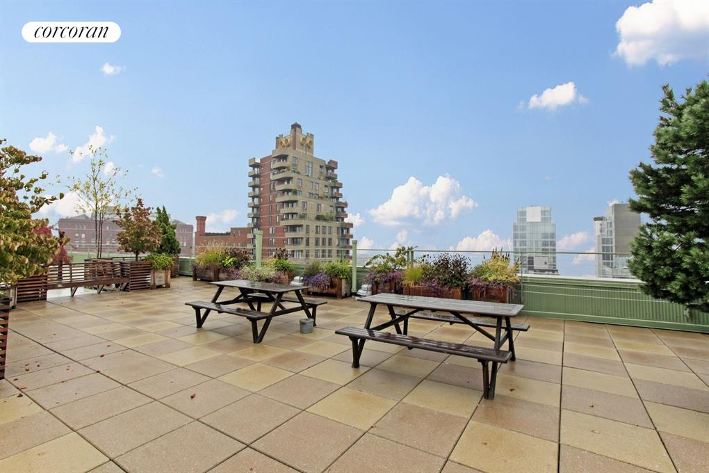Common roof deck with direct water views