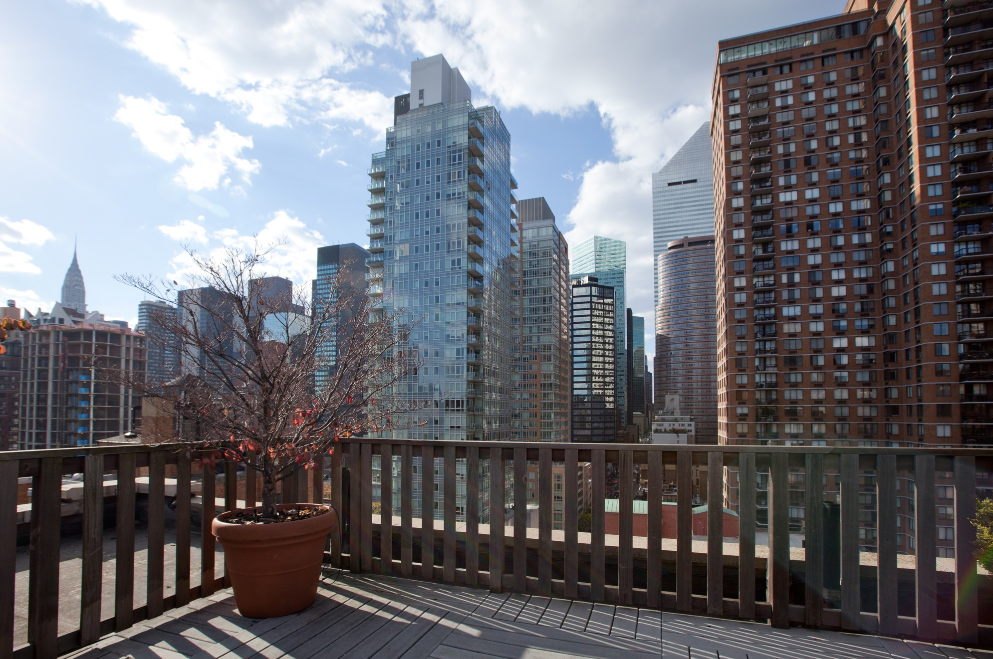Common Roof Deck with Spectacular Midtown Views