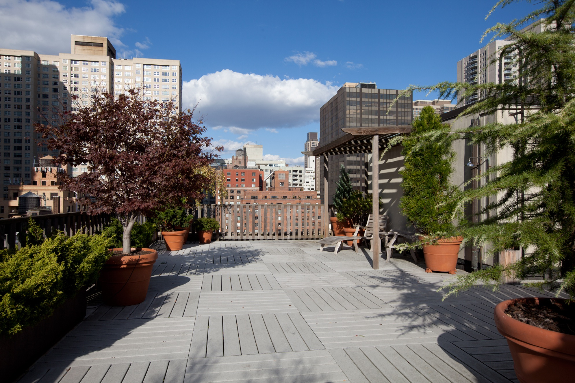Spacious Planted Common Roof Deck