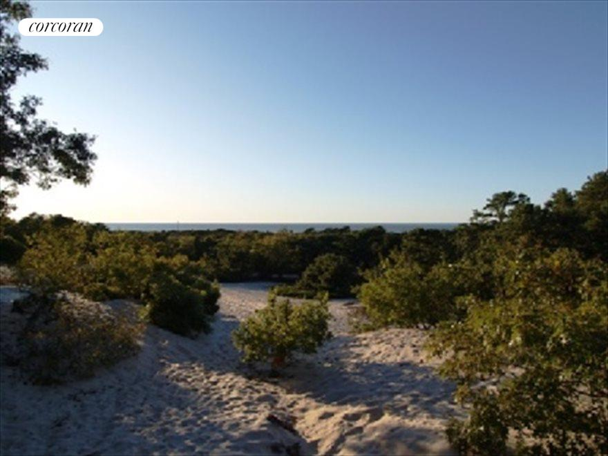 9 acres of the peconic dunes