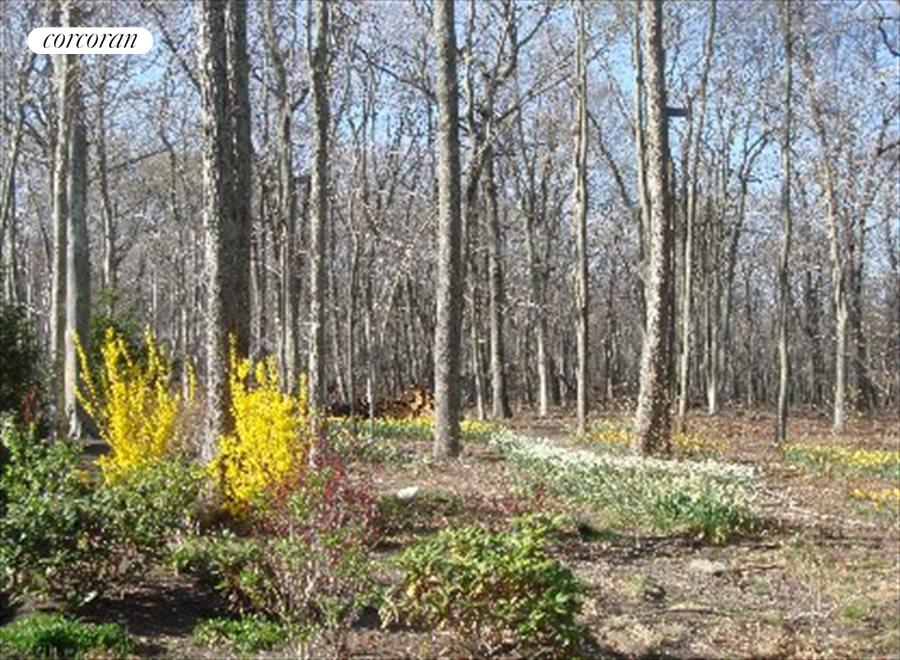 30+ acre reserve