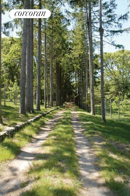 miles of walking trails