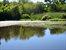 Pondfront