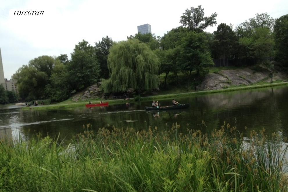 Harlem Meer, Central Park