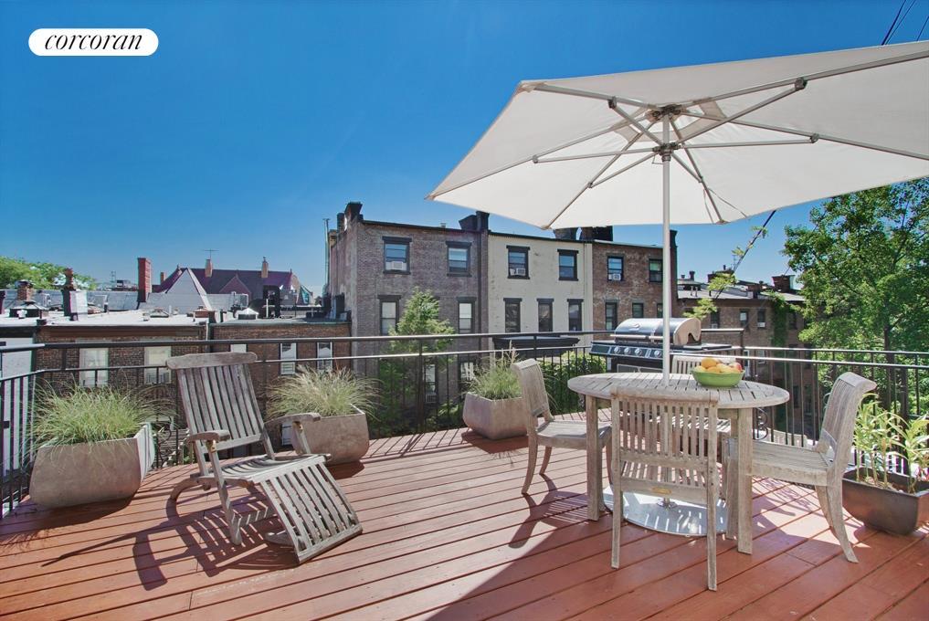 862 Carroll Street 4 Living Room Roof Deck