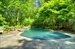 870 Millstone Road, Free form gunite pool