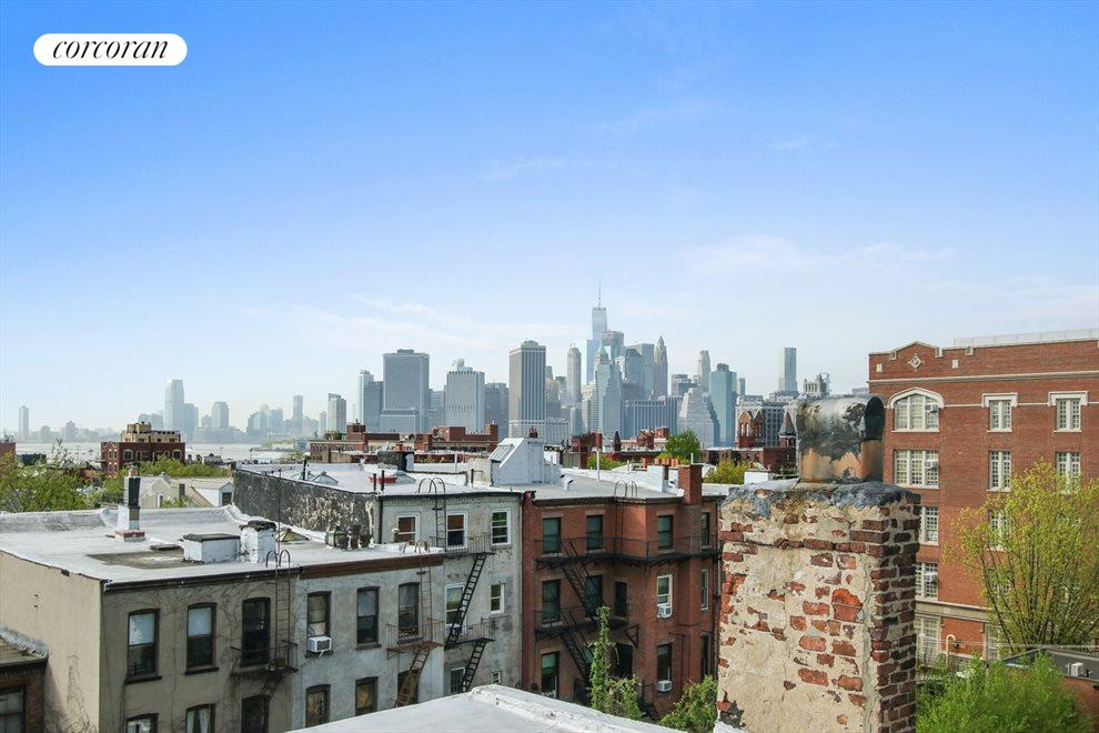 New York City Real Estate | View 22 Strong Place | Roof deck view