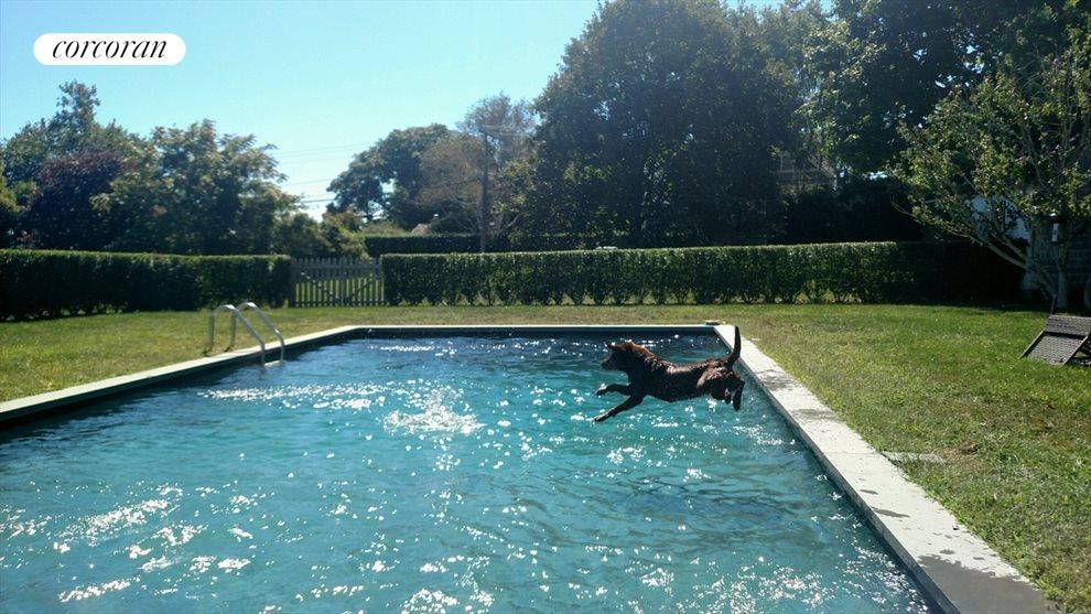 new heated gunite pool