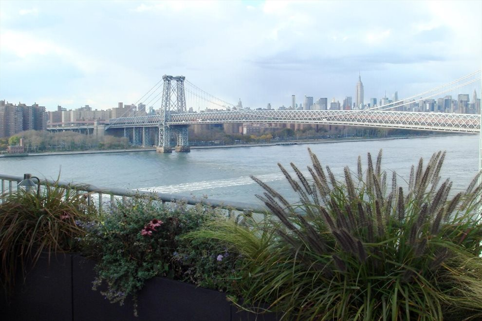 Roof Deck overlooking the East River