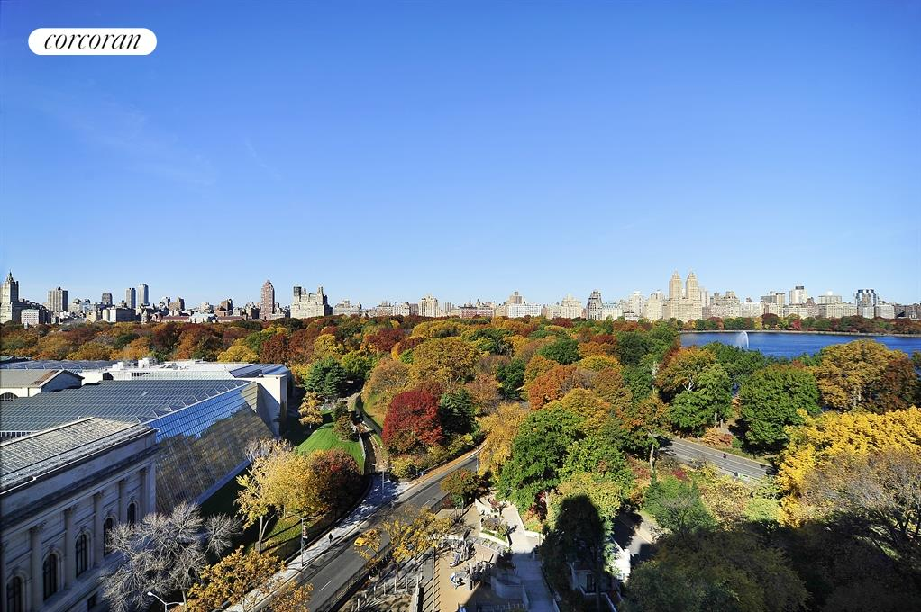 Magnificent views of Central Park and the Met