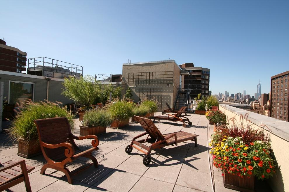 Large planted roofdeck, facing South