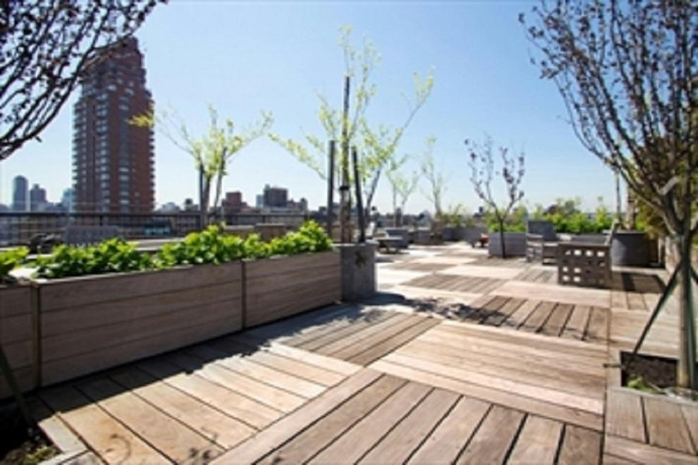 Beautifully planted roof deck with stunning views!