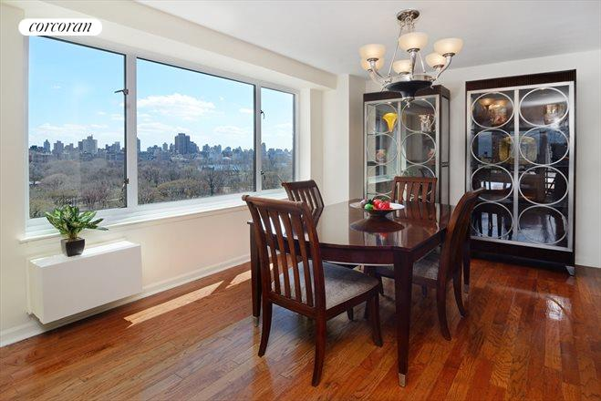 392 Central Park West, 16R, Living Room