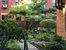 54 East 8th Street, 4H, Common garden