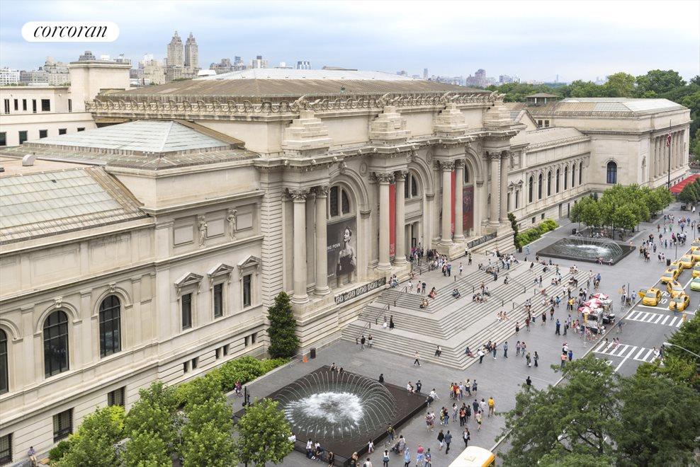 Metropolitan Museum of Art & Fifth Avenue Views