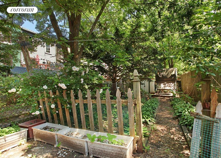 New York City Real Estate | View 297 HOYT ST | Back Yard