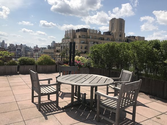 176 West 87th Street, 11A, Rooftop terrace