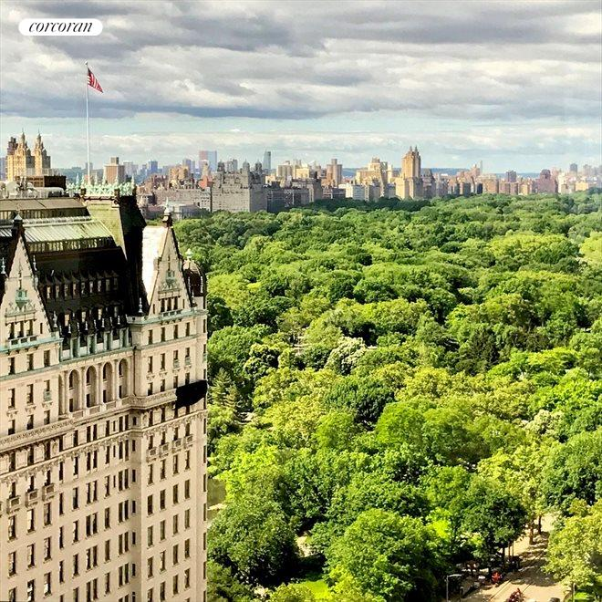 New York City Real Estate | View 721 Fifth Avenue, #30G | 2 Beds, 2.5 Baths