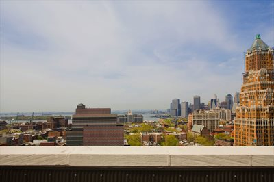 New York City Real Estate | View 96 Schermerhorn Street, #8D | Water View from the Roofdeck