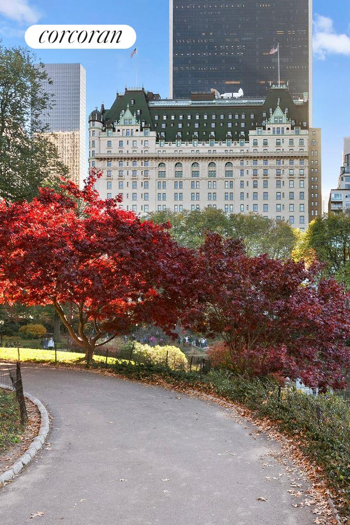 1 Central Park South, 301, Other Listing Photo