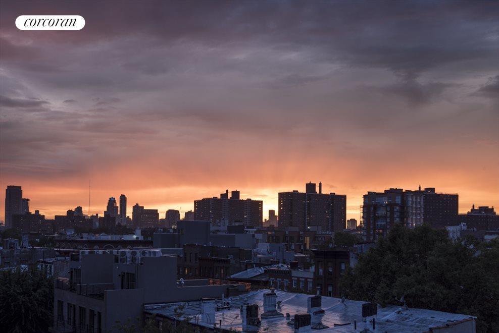 ...and the Brooklyn skyline too.