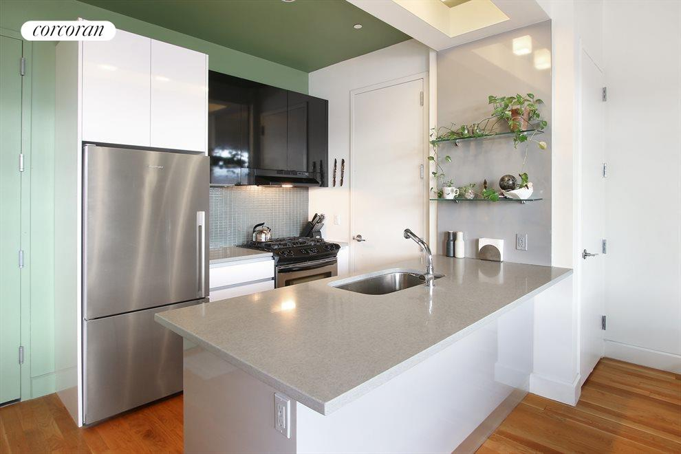 Stainless steel appliances and cesarstone counters
