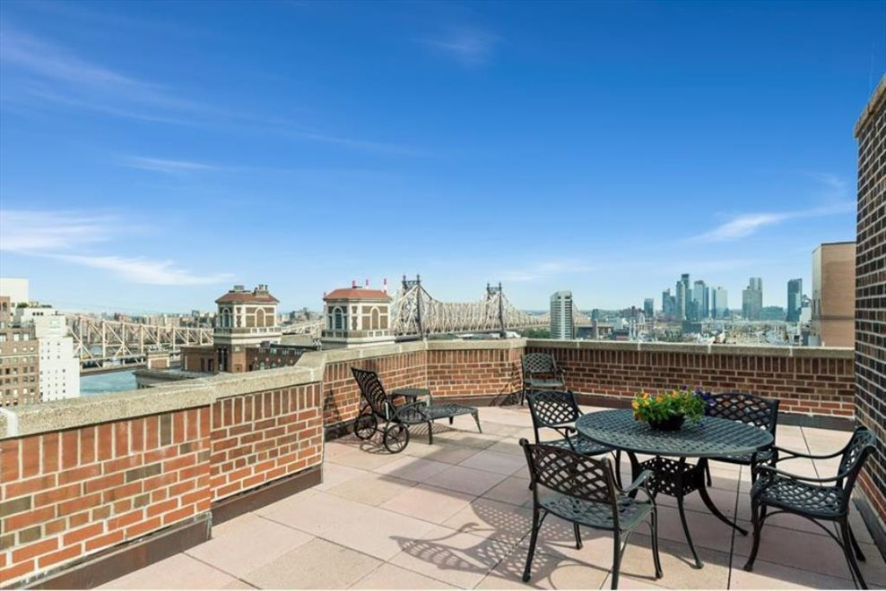 Roof top terrace- Amazing East River views
