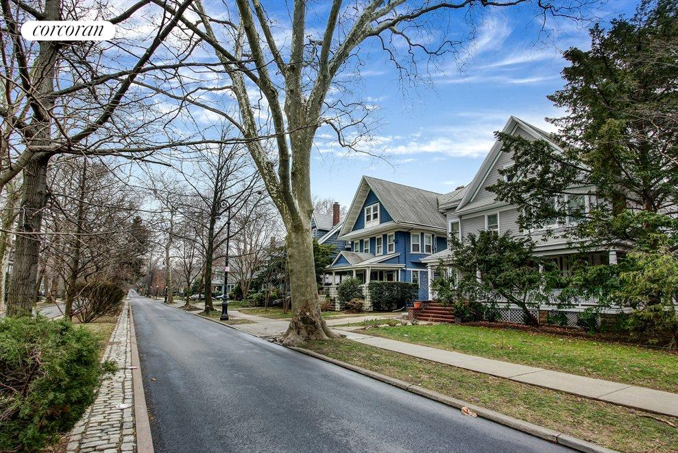 ...all the charm of beautiful Ditmas Park