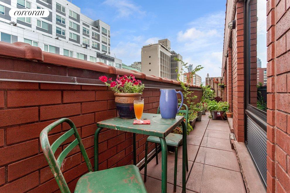 New York City Real Estate | View 233 Pacific Street, #4D | Perfect to grow your own herbs and flowers