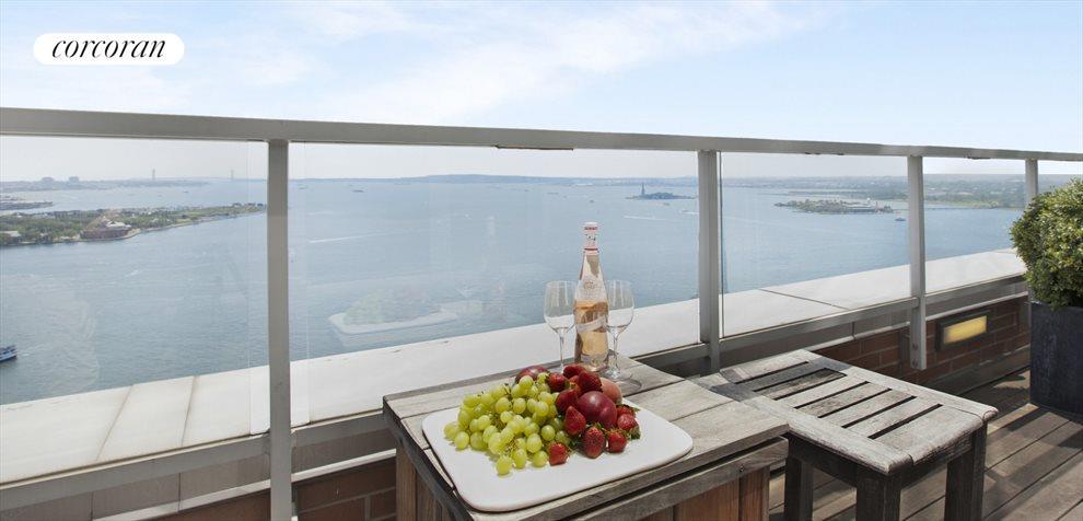 Terrace with Iconic NY Harbor Views