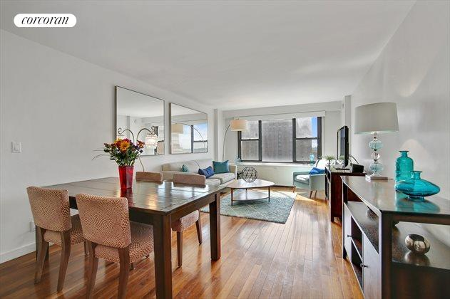 85 Livingston Street, Apt. 16E, Downtown Brooklyn