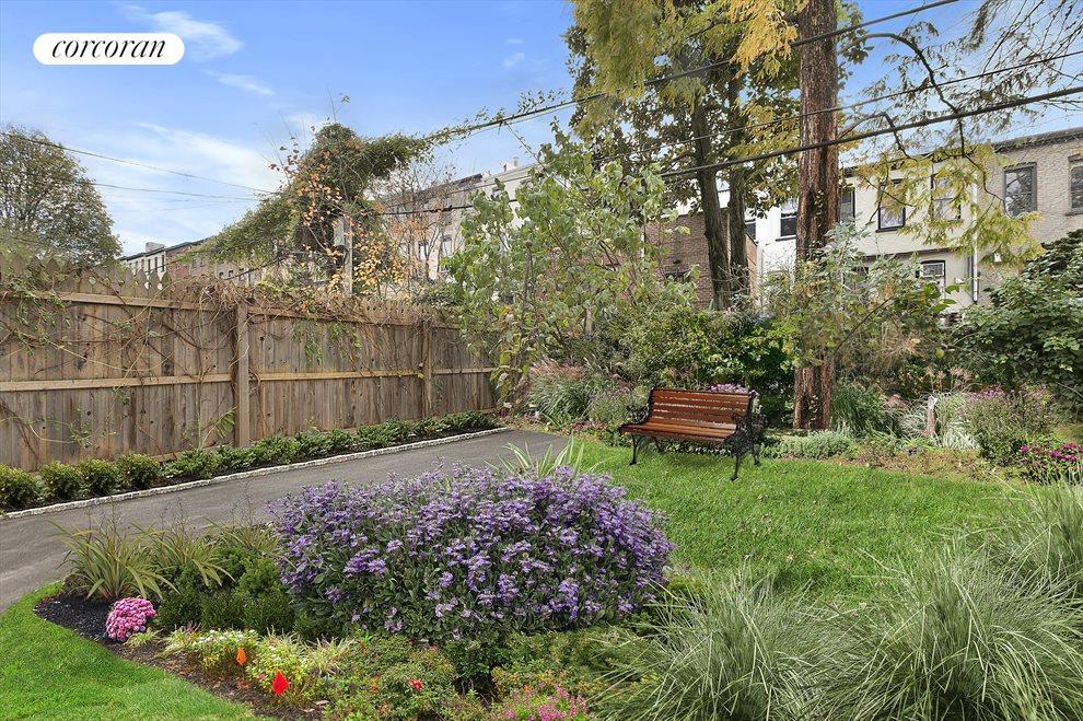 South-facing garden has myriad possibilities.